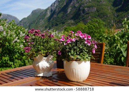 flowers on a table at the garden and mountains in the background - stock photo
