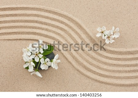Flowers on the sand, can be used as background - stock photo