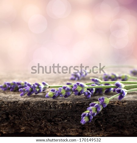 flowers on wooden space and bokeh  - stock photo