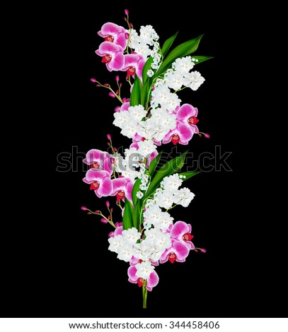 Flowers orchids and lilies of the valley isolated on a black background. - stock photo