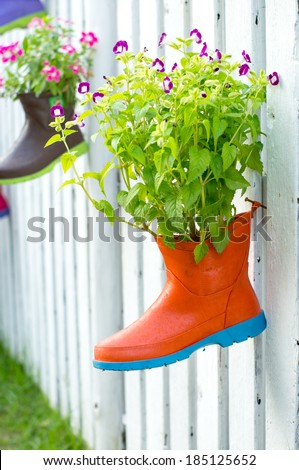 flowers plant in old rubber boots.  - stock photo