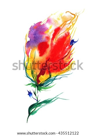 Flowers watercolor illustration, on white background