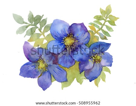Flowers watercolor illustration. Spring and Summer