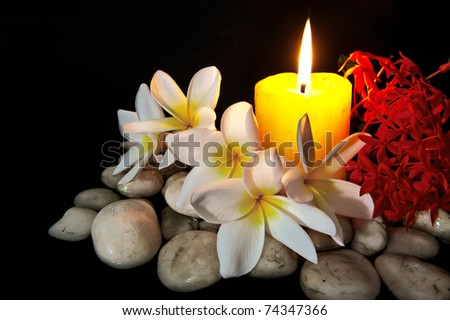 Flowers candle white rock spa use stock photo 74347366 shutterstock flowers with candle white rock for spa use isolated on black mightylinksfo Gallery
