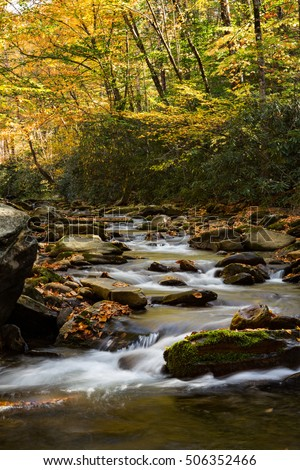 Flowing river in autumn with moss and fall leaves Smoky Mountains National Park Tennessee and North Carolina vertical