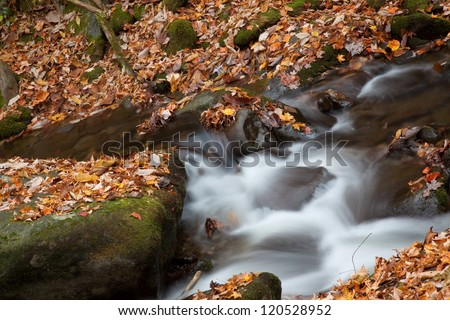 Flowing stream, cascading over rocks with fallen Autumn leaves on stones along the bank, refreshing, pure mountain water