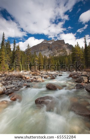 Flowing Stream in Banff National Park, Alberta, Canada - stock photo