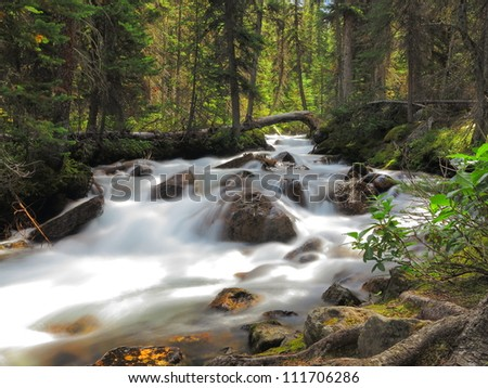 Flowing stream in Banff National Park, Canada - stock photo