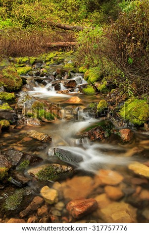 Flowing stream with green moss in the Wasatch Mountains, Utah, USA. - stock photo