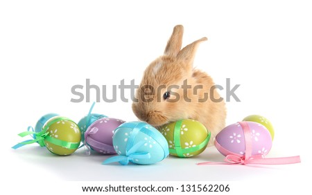 Fluffy foxy rabbit with Easter eggs isolated on white - stock photo