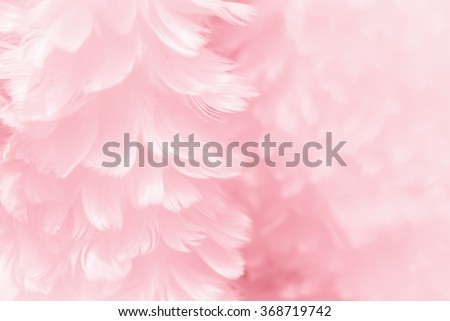 Fluffy mauve pink feather fashion design background - black and white tinted Valentine day fuzzy textured photograph - soft focus - stock photo