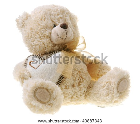 Fluffy teddy bear isolated on white background - stock photo