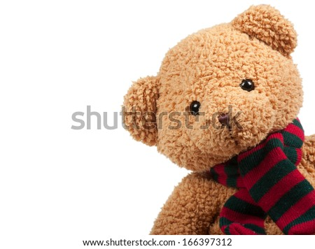 Fluffy teddy bear over the white background - stock photo
