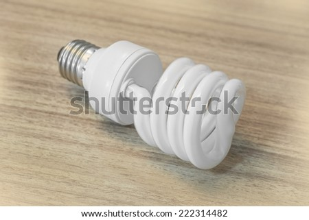 Fluorescent Energy Saving Light Bulb - stock photo