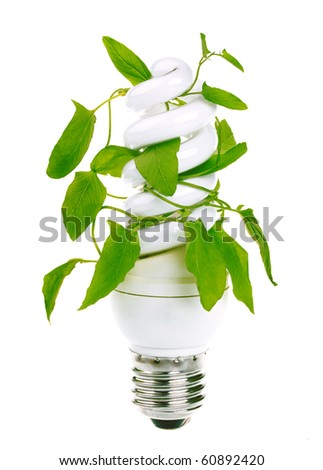 Fluorescent energy saving light bulb with green plant isolated on white background - stock photo