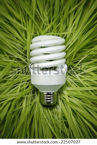 Fluorescent Light Bulb in a Bed of Grass - stock photo