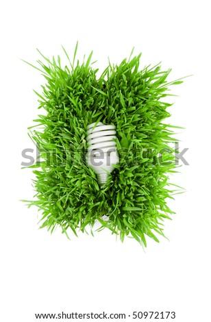 Fluorescent light bulb on grass symbolizing green energy. - stock photo