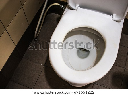 Flush toilet in the bathroom interior