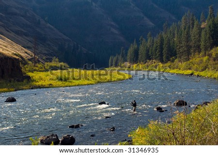 Fly fishing a beautiful river - stock photo