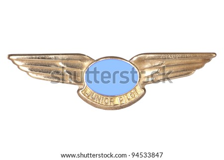 Flyer's Brass Wings isolated on white - stock photo