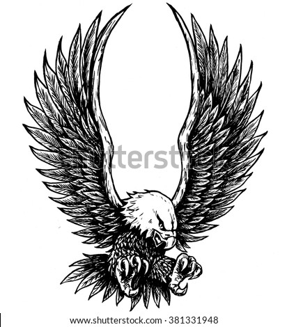 Flying Bald Eagle Illustration Stock Illustration ...