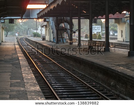 flying bird at the colombo train station in the early morning - stock photo