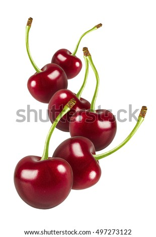 flying cherry fruits isolated on white background with clipping path