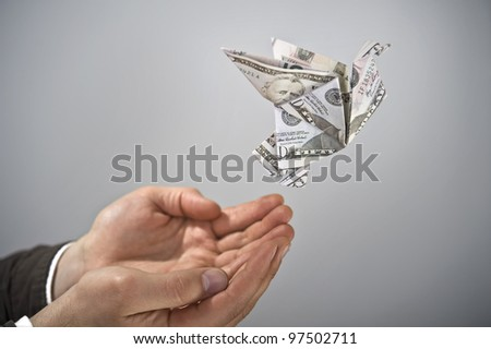 Flying dollar bird - stock photo