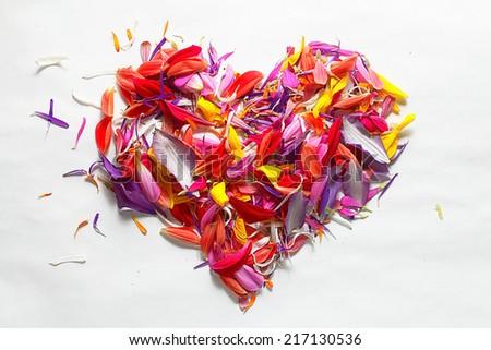 flying red petals, flowers lightness concept - stock photo