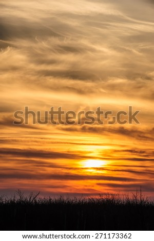 flying storks birds silhouettes on dramatic orange sunset background - stock photo