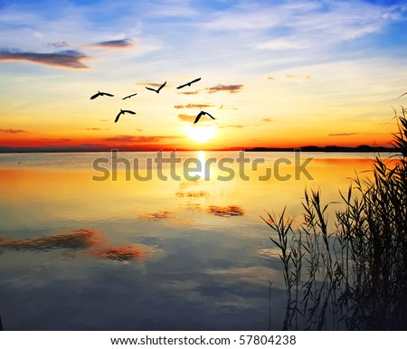 flying towards the sun - stock photo