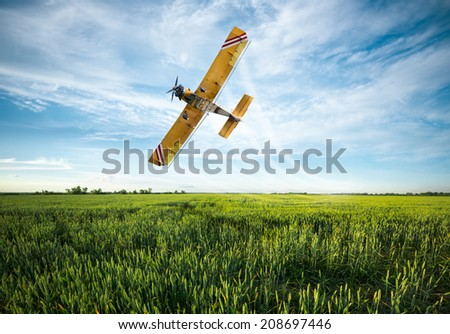 flying yellow plane sprayed crops in the field - stock photo