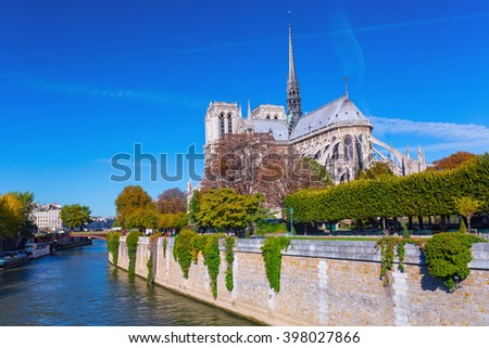 Focus on foreground flowers. View beautiful Notre Dame Cathedral with garden and flowers in Square du Jean XXIII, Paris, France. - stock photo