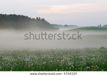 Fog above a field - stock photo