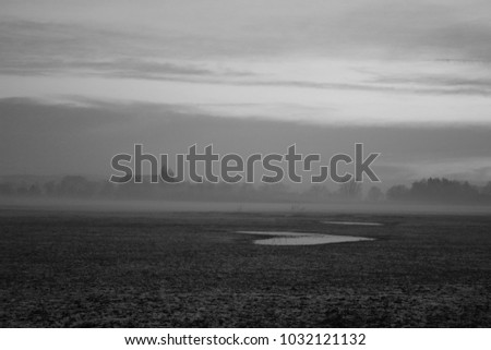 Fog above the fields
