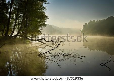 Fog and lake at sunrise in fall - stock photo