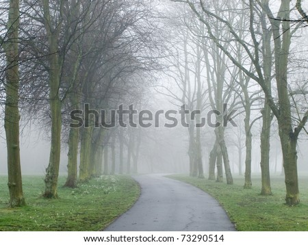 Fog covering a road in a park in England - stock photo