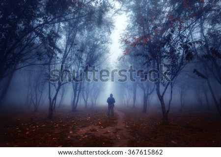 Fog forestman walking through a fairytale forest - stock photo