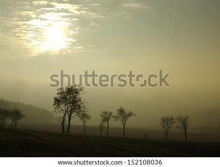 Fog in germany