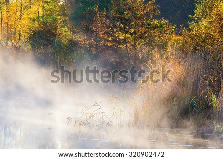 Fog in the bay at the beach - stock photo