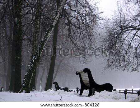 Fog in the park. Winter. - stock photo