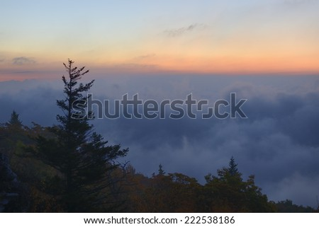 Fog in Valley - stock photo