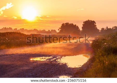Fog on the early morning at the road in Estonia - stock photo