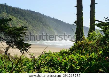 Fog on the Pacific coast. USA. Oregon - stock photo