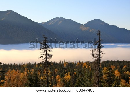 Fog over the valley - stock photo