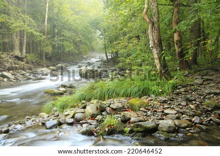 Fog Settles Over the Little River in the Great Smokey Mountains National Park - stock photo