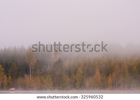 Foggy lake scape and vibrant autumn colors in trees at dawn - stock photo