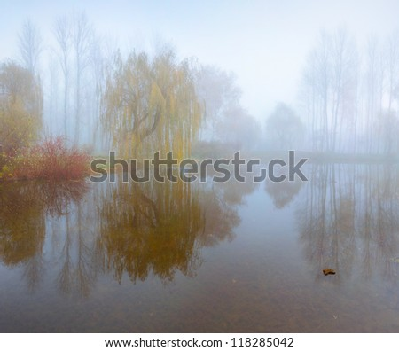 Foggy morning landscape in the autumn park near the lake - stock photo