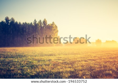 foggy morning on meadow. sunrise landscape photo with vintage effect - stock photo