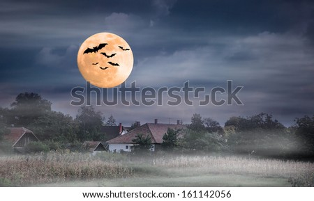Foggy night and moonrise over farmland. Montage,own photos.